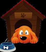 استضافة كلاب - اماكن استضافة الكلاب - اقامة - مزرعة عرابي - oraby farm